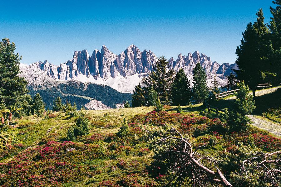 Bressanone alberghi hotels alloggi per le sue vacanze for Bressanone vacanze